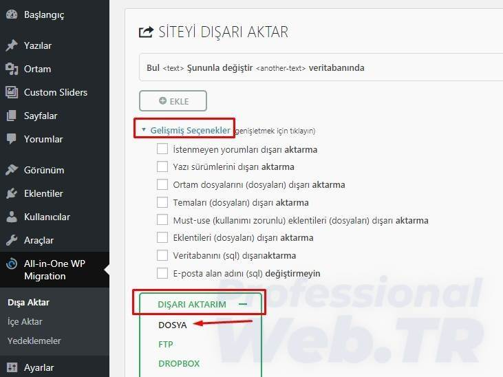 All-in-One Wp-Migration export seçenekleri